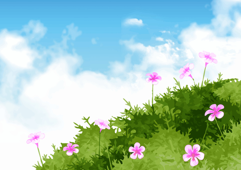 Green and blue sky (flowers)