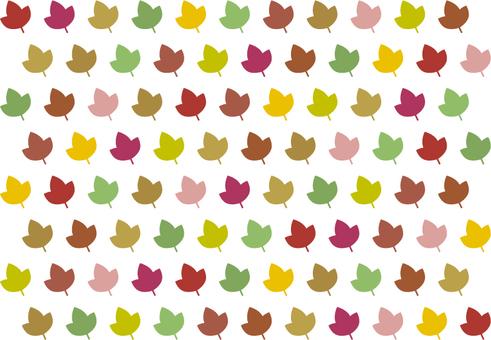 多彩的樹葉