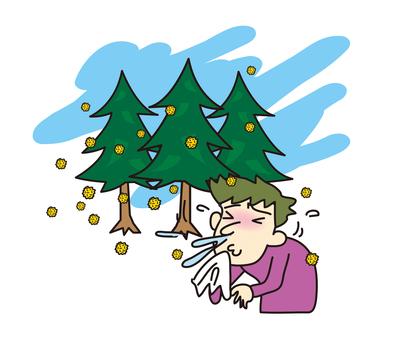 Sneezing with cedar pollinosis