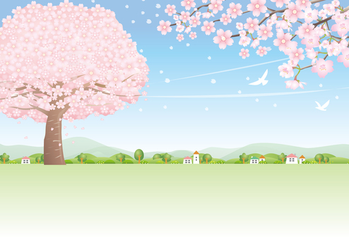 In the wind of the season when cherry blossom petals fly