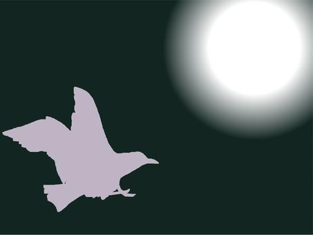 A bird heading towards the light