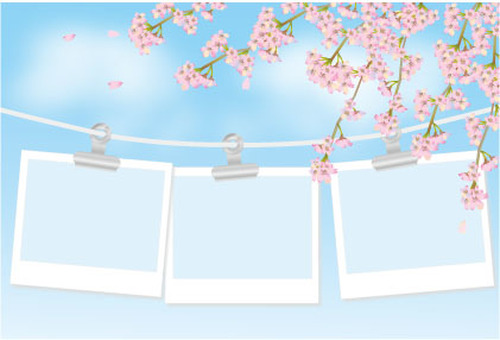 Cherry blossoms and photo frames