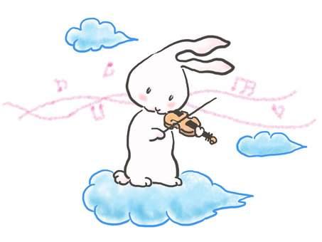 바이올린 토끼 52