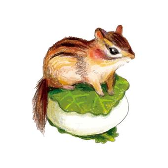Squirrel on rice cakes
