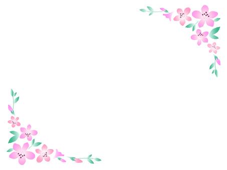 19. Azalea frame 2