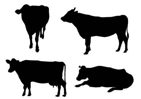 Cow · Silhouette