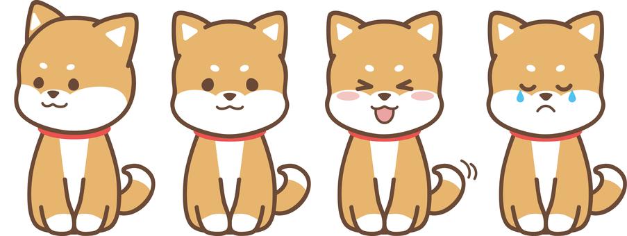 柴犬_茶色_座る