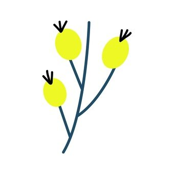 Northern European fruit (yellow, 3 pieces)