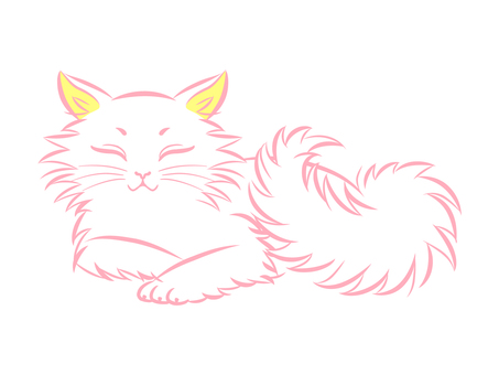 페르시아 고양이 _003