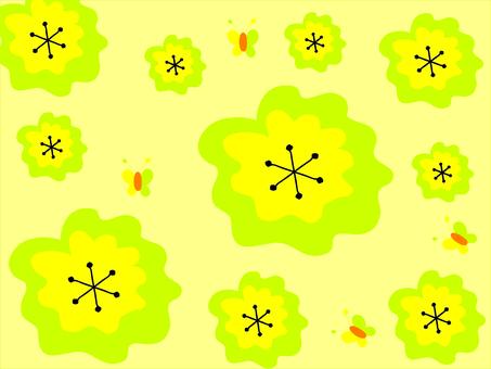 可愛的花朵