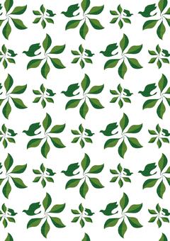 나뭇잎과 조류