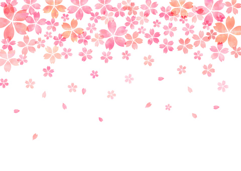 Cherry blossoms _ pastel background 1820