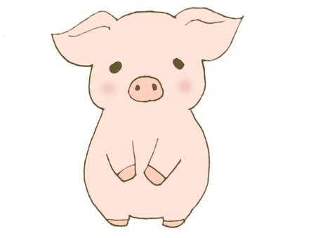 Child pig