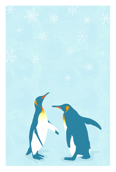 Postcard (King penguin)