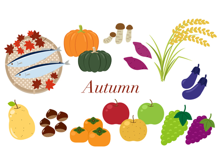 A variety of autumn ingredients