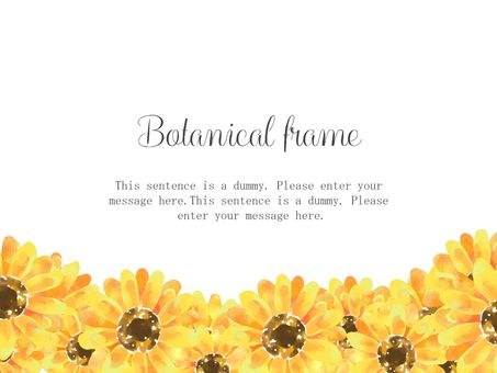 Sunflower frame 02