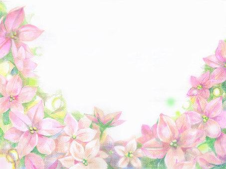 ピンクの花 フレーム
