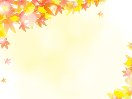 Fall image 026