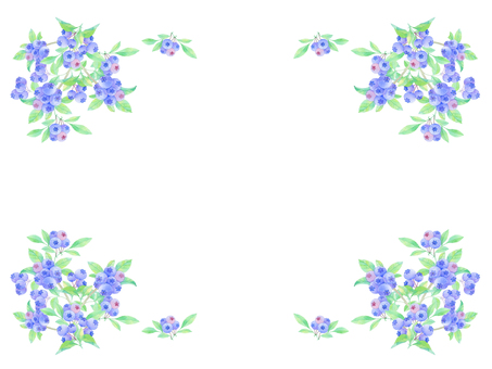 Blueberry Fancy ★ 0389-W