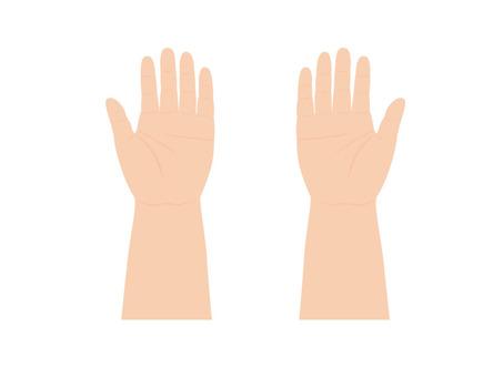 Child's hand (flat)