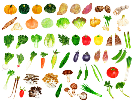 Colored pencil vegetables summary