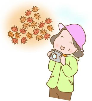 Autumn leaves hunting