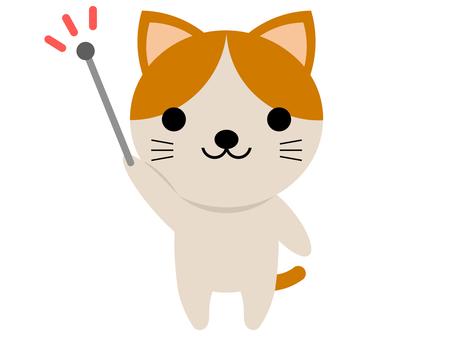 동물 고양이 지시봉