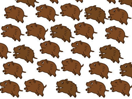 A lot of boar