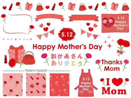 Mother's Day Carnation Set 1
