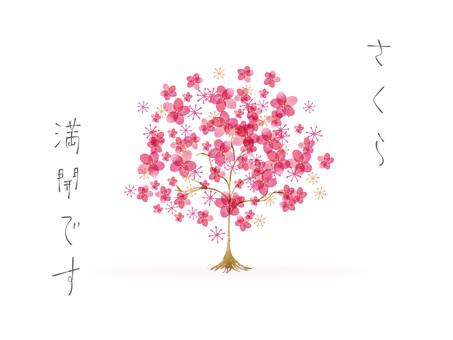 벚꽃 프레임 ver49