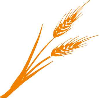 Wheat a_ orange_cs