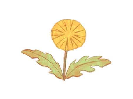 Illustration of dandelion