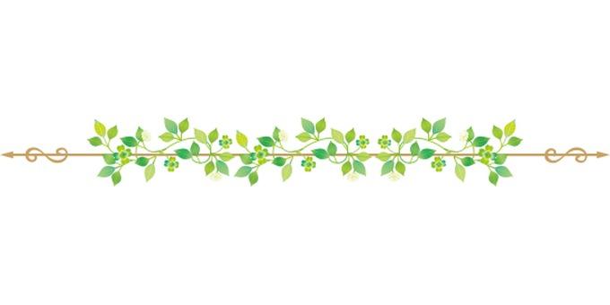 식물 장식 라인