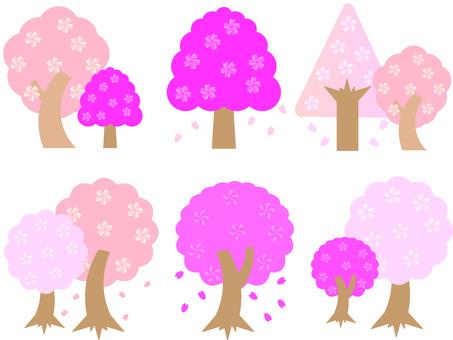 Cute cherry blossoms 05