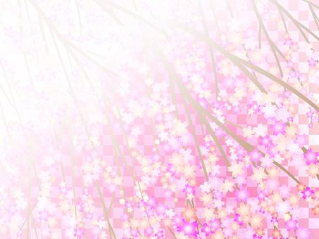 Cherry blossom background 13