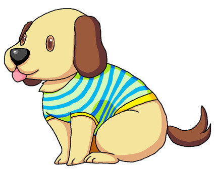 Dog in T-shirt