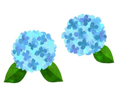 Watercolor illustration of hydrangea <light blue>