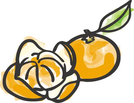 Ingredients _ oranges