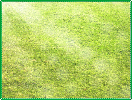 Perforation lawn frame
