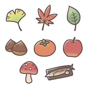 An assortment of autumn