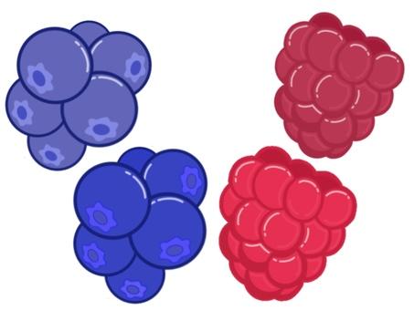Assorted berries