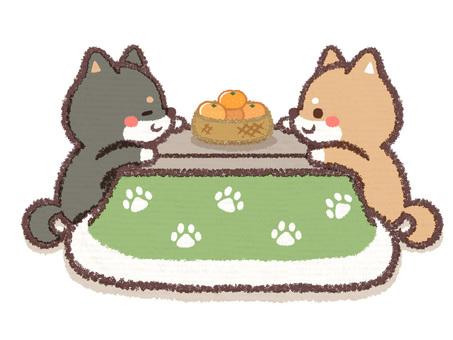 Shiba Inu Twin Kotatsu Inn