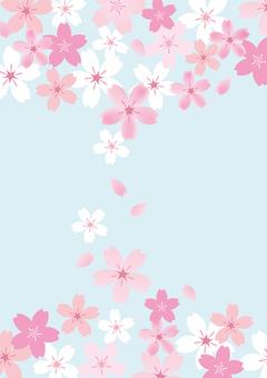 벚꽃 40