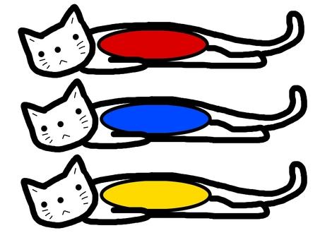 Cat name frame frame frame video