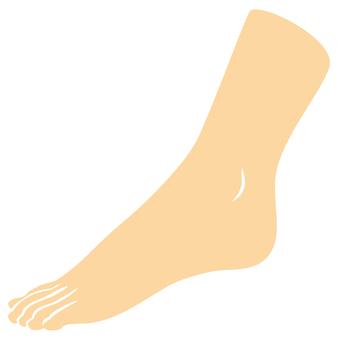 Body parts (feet)