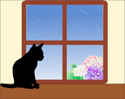 Nyanko looking out of the rain
