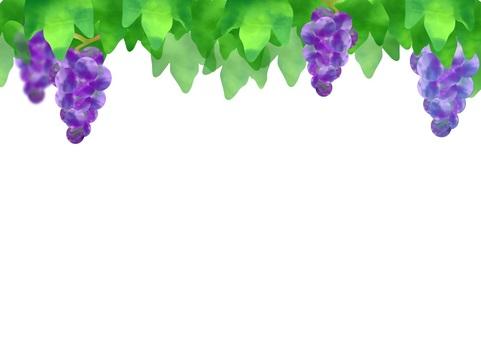 Watercolor grape frame