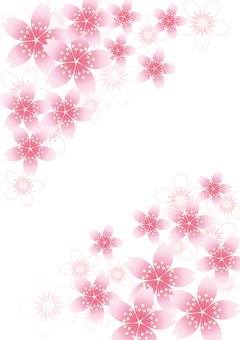 벚꽃의 꽃 33