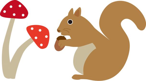 Squirrel and mushrooms