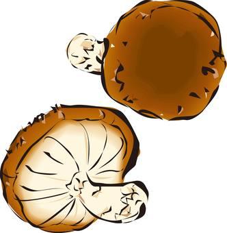 香菇,蘑菇